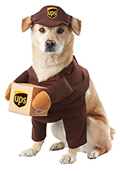 Best dog costumes Reviews