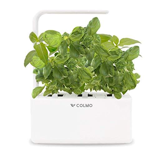 See the TOP 10 Best<br>Indoor Herb Garden Kit Grow Light