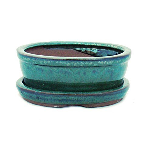 Bonsai pot avec soucoupes-vert-taille 1–modèle ovale-o7 l 12 cm-b 9,5 cm-hauteur : 4,5 cm