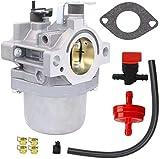 HOOAI LMT 5-4993 Carburetor for Walbro LMT 5-4993 Briggs & Stratton 799728 498027 499161 498231 494502 494392 495706 498134 496592 699318 699737 699856 699896-28V707 Carburetor