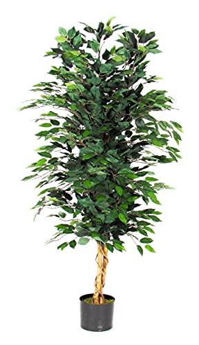 Ficus Benjamin - Árbol artificial verde para decoración, apto para uso exterior, resistente a los...