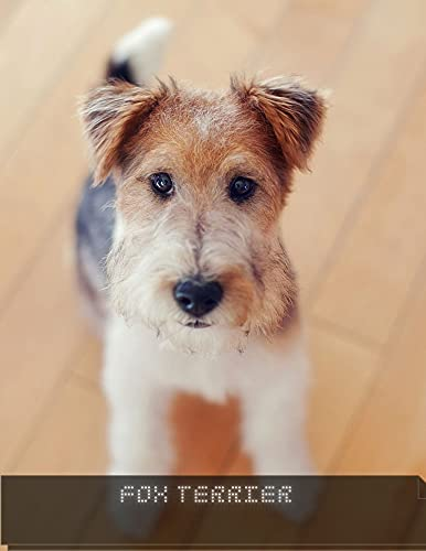 Fox Terrier: Complete breed guide (English Edition)