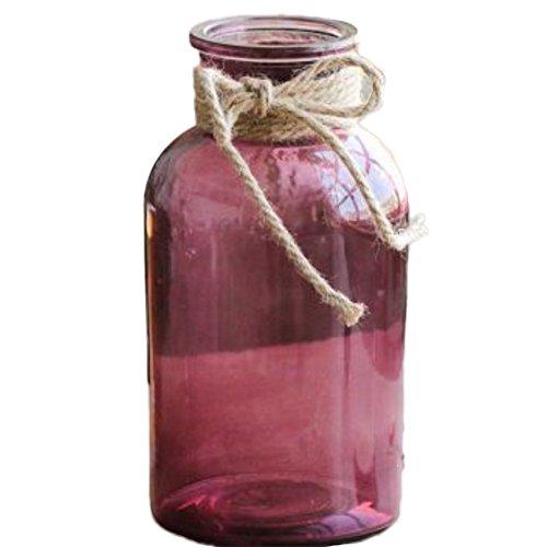 Da.Wa Vase en verre étui à fleurs bouche large créatif design coloful pour fleurs séchées ou hydroponique décoration de maison ou de bureau,rose