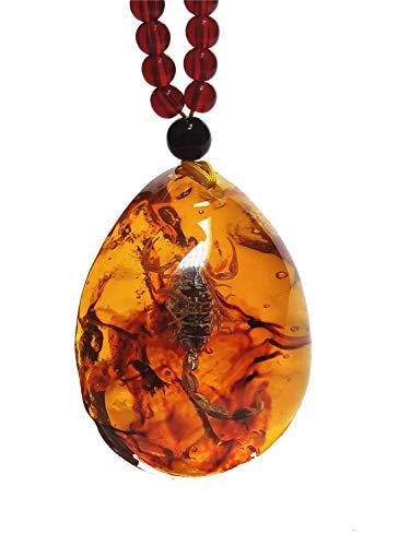 Yigedan - Collana con ciondolo a tema Re Scorpione, in ambra, con vero insetto