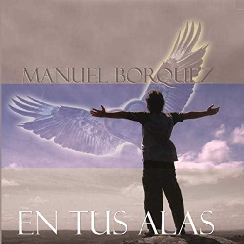 Manuel Bórquez Inzunza