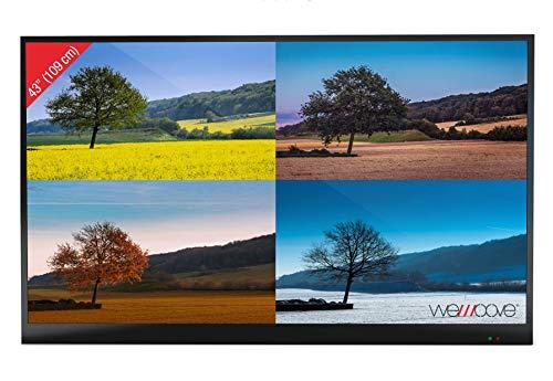 TV exterior 109 cm (43'') impermeable muy alta luminosidad