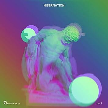 Hibernation 1