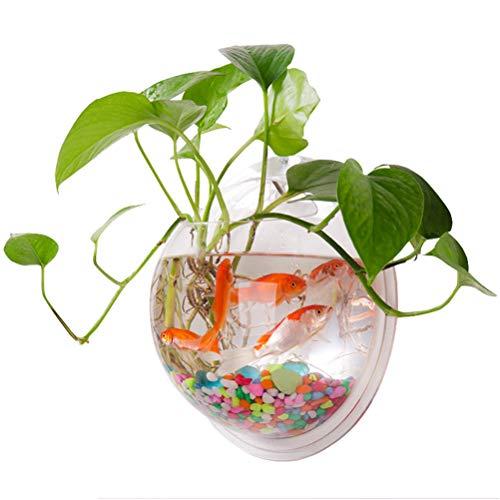 HEREB Macetero de pared para colgar hecho de acrílico transparente ideal como jarrón de flores plantas pecera o acuario - para decoración del hogar y oficina transparente Diámetro 15 cm