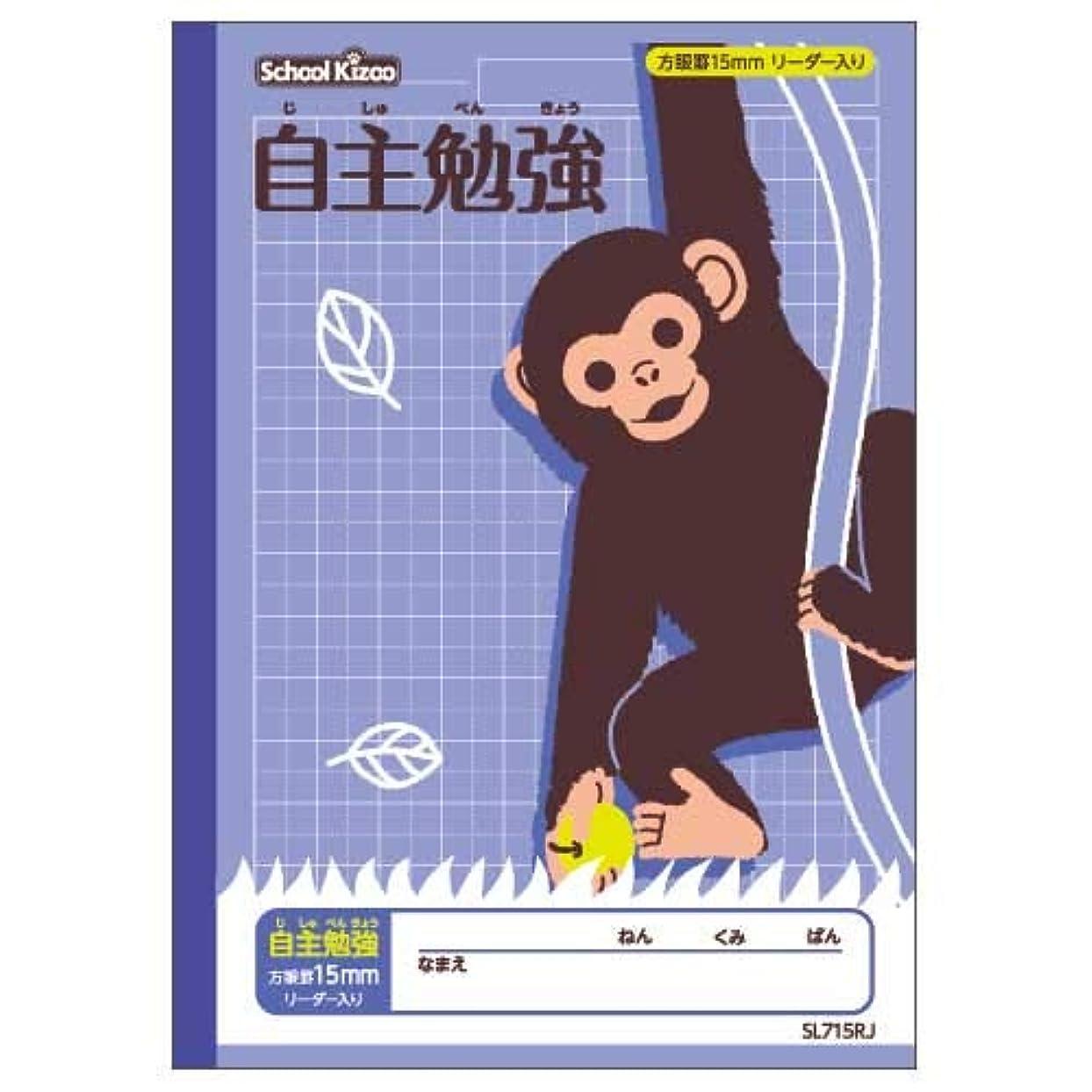 凍る指導する陽気なアピカ スクールキッズ 学習帳 自主勉強 15mm方眼罫 リーダー入り SL715RJ 【まとめ買い10冊セット】
