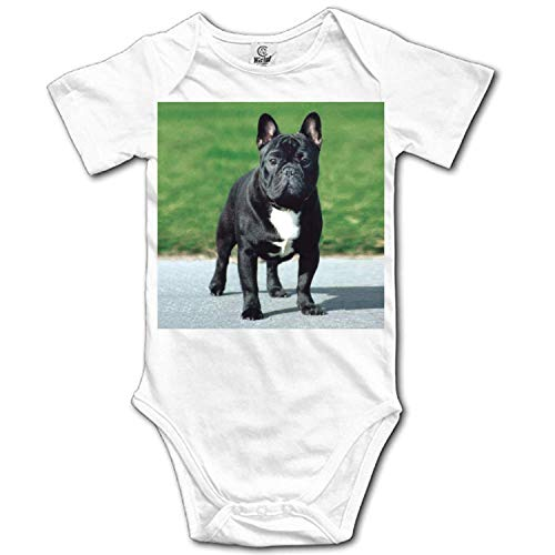 Huazh Unisex Baby Short-Sleeve Onesies Porcelain White Dog from Friends Cotton Bodysuits