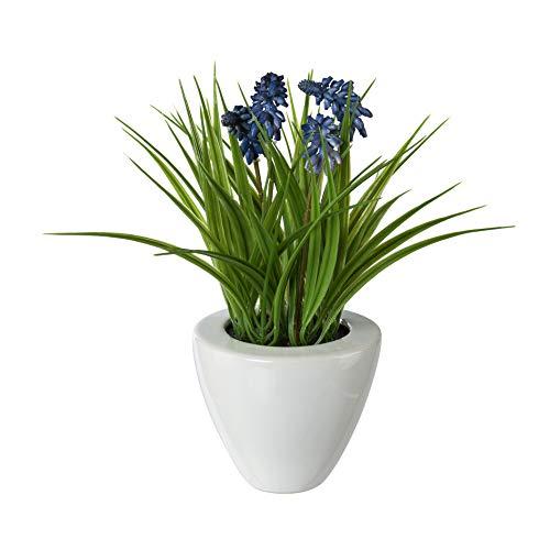 wohnfuehlidee Kunstpflanze Muscari, 2er Set, Farbe blau, im Keramik-Topf, Höhe ca. 29 cm