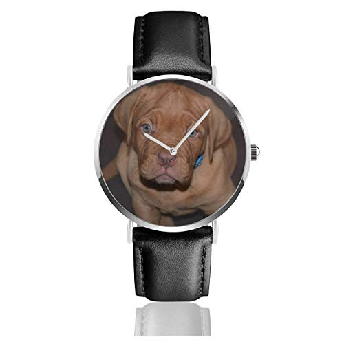 Lindo perro cachorro mascota Staffordshire Bull Terrier cachorro clásico casual moda reloj de cuarzo acero inoxidable correa de cuero relojes