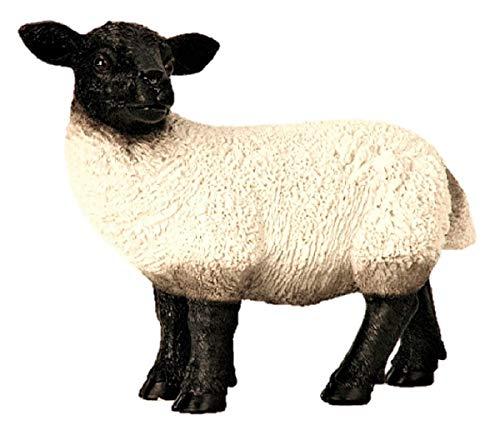 Große Figur Rhönschaf 38 x 31 cm Schaf stehend Figuren für Haus und Garten Dekoration Bauernhof Schafe