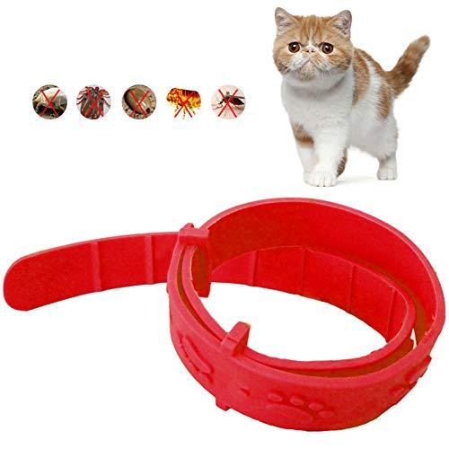 ZUHANGMENG Katzenhalsband, verstellbares Katzen-Anti-Floh-Halsband, sichere Verhinderung der Wirksamkeit Flohmilbenläuse Wasserdichtes Flohhalsband für Haustiere in Premiumqualität