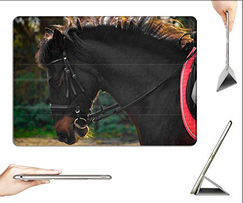 Case for iPad Pro 12.9 inch 2020 & 2018 - Horse Andalusians Spanish Ride Trot Bridle Teeth