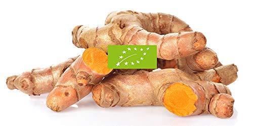 Bio Kurkuma frisch | Anubisfoods® | Frische Wurzel | Premium Qualität | Natürliches Curcumin | 400g