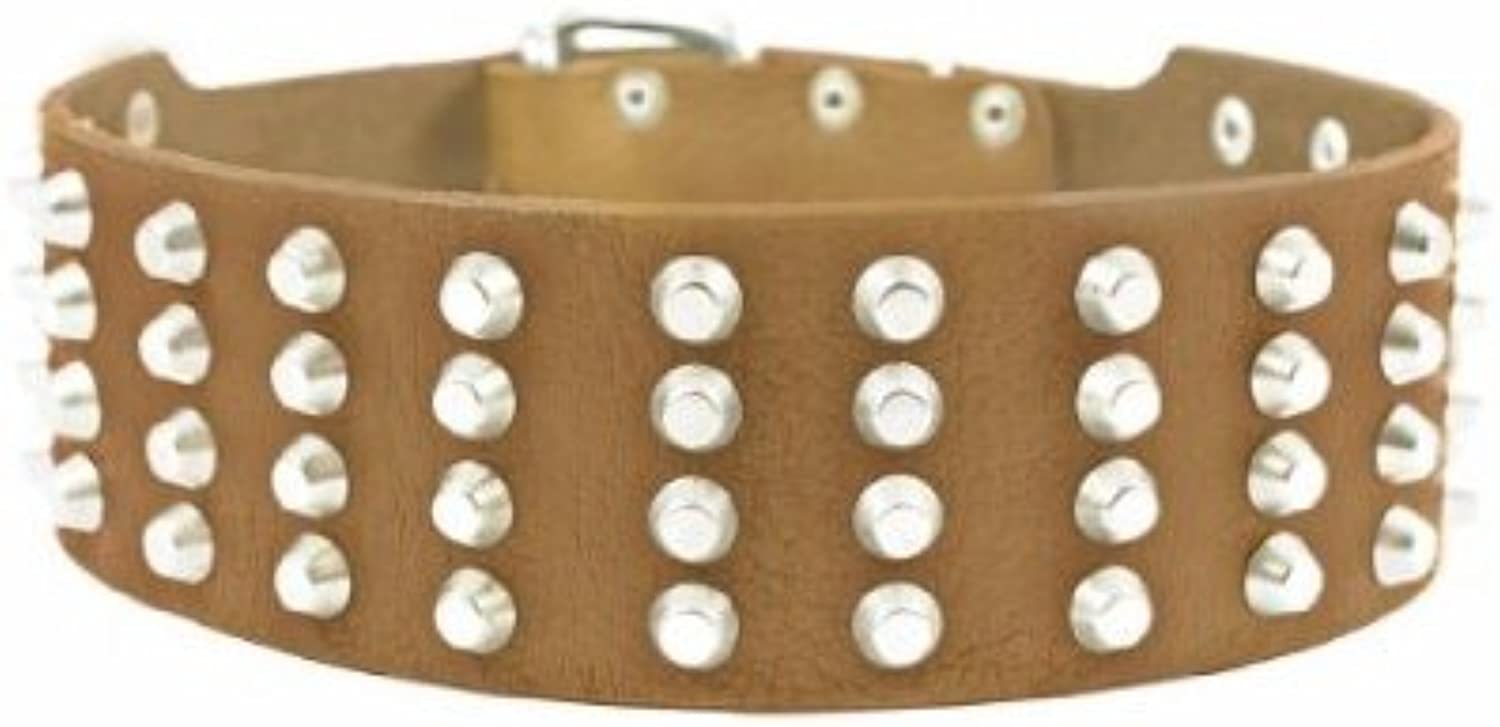 Dean and Tyler  4 ROW STUDS , Extra Wide Dog Collar with Nickel Studs  Tan  Size 91cm by 6cm  Fits Neck 86cmes to 97cmes.