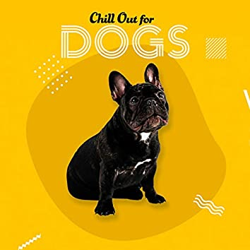Chill Out for Dogs