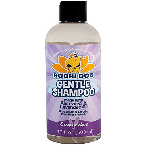 Bodhi Dog Shampoo- Best Dog Shampoo