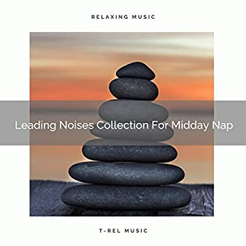 Leading Noises Collection For Midday Nap