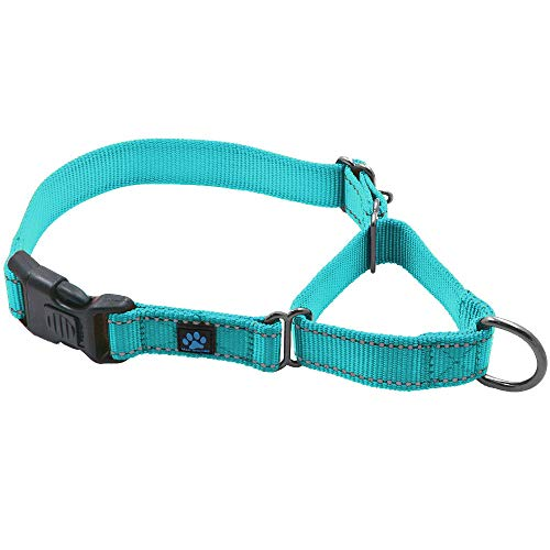 Max and Neo Nylon Martingale Collar - We Donate a Collar to a Dog Rescue for Every Collar Sold (Large, Teal)