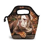 Bolsa Térmica Comida Bolsas De Almuerzo para Mujeres Hombres Niñas Niños Bolsa Isotérmica De Almuerzo Cachorro bulldog americano