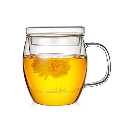 17 Oz Glass Teapot with Infuser Loose Leaf Tea Maker High Borosilicate Glass Mug Tea Cup with Lid