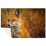 BestIdeas Primer plano de Fox On Grass Prints Manta suave cálida acogedora para cama, sofá, picnic, camping, playa, 150 x 100 cm