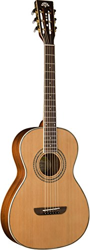 Washburn WP11SNS Parlor Series Acoustic Guitar, Natural Satin Finish
