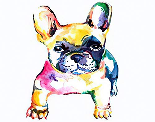 Aluffay Jigsaw Puzzles Premium Quality Frenchie French Bulldog Original Watercolor of Dog Rainbow 1000 Pieces Wooden Jigsaw Puzzle for Adults Kids Puzzle Game 20 Inch x 30 Inch