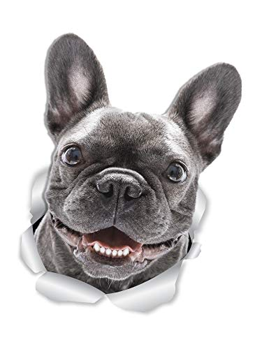 Winston & Bear Smiling Frenchie Dog Wall Decals - 2 Pack - French Bulldog 3D Sticker Decals for Walls, Cars, Toilet and More - Retail Packaged French Bulldog Gifts