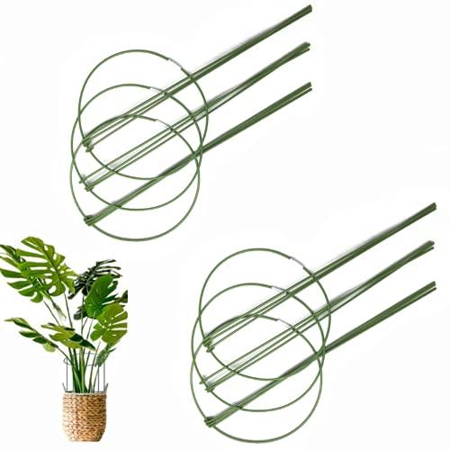 AzulLanse 6 varillas 6 Pcs estacas de soporte para plantas, estacas de metal para plantas de jardín, anillo de soporte para plantas redondo verde, jaula para plantas, soporte para plantas de tomate