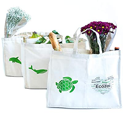 ecozoi Reusable Organic Cotton Grocery Bags with 6 Organizer Pockets - Set of 3 XL Reusable Shopping Bags | Collapsible, Washable, Eco-Friendly, Heavy Duty, 80 lbs Capacity per Bag | Produce Bags