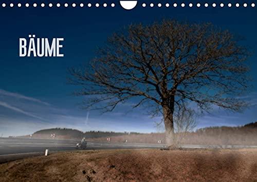 Bäume (Wandkalender 2022 DIN A4 quer)