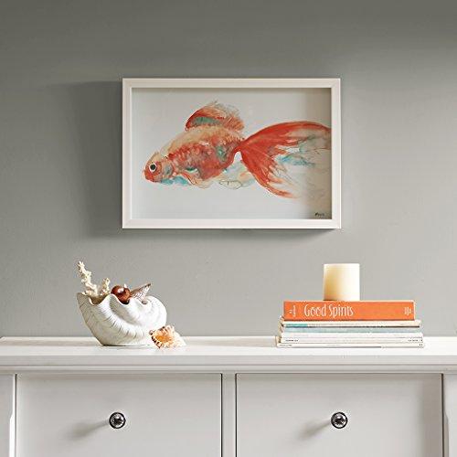 goldfish picture - 1