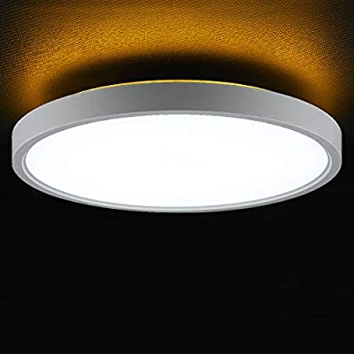 TALOYA LED Surface Mount 12 Inch Ceiling Light with Back Night Light (Gold), 24W Round Modern Flush Mount Light Fixture for Child Teen Baby Boy Living Room Bedroom, Easy Installation