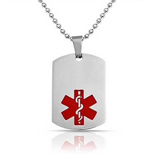 JGFinds Type 1 Diabetes Medical Alert Engraved Dog Tag with 22 Chain - All Stainless Steel