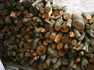 Viveros Horizon Forestal Leña de encina para Chimenea 15 ...
