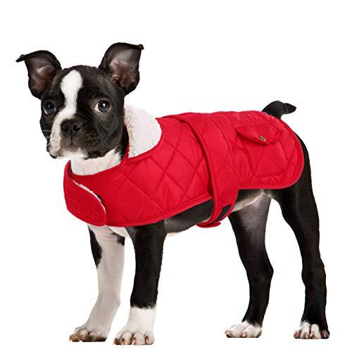 Queenmore Winter Dog Jacket Warm Quilted Fleece Lined Waterproof Coat Hook and Loop Closure, Red Medium