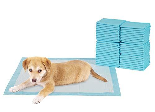 TERRA SELL Premium Hunde-Toilette - 50er Set Hygiene Unterlagen für Haustiere - Saugstarkes Hundeklo - Welpentoilette zur Sauberkeitserziehung 56 x 56 cm