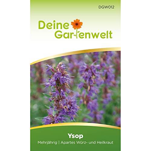 Ysop Samen (Mehrjährig) | Ysopsamen | Saatgut für Ysop-Pflanzen | Kräutersamen