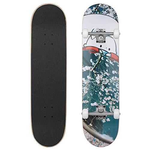 Emillion Mirror Complete Skateboard 8.0 komplett Board ideal auch für Anfänger