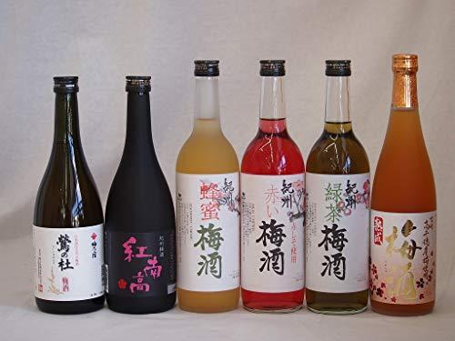 梅酒のみ比べ6本セット(紅南高梅酒20度(和歌山) 高千穂産梅使用熟成梅酒 赤しそ赤い梅酒(和歌山) 梅酒 鶯の杜(奈良) 蜂蜜梅酒(和歌山) 緑茶梅酒(和歌山)) 720ml×6本