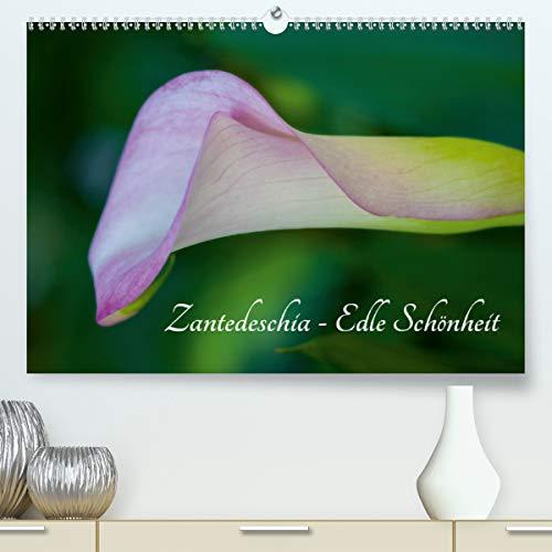 Zantedeschia - Edle Schönheit (Premium, hochwertiger DIN A2 Wandkalender 2021, Kunstdruck in Hochglanz)