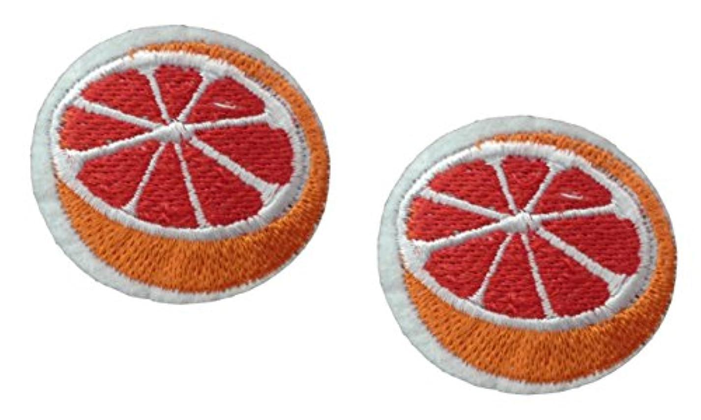 2 small pieces ORANGE Iron On Patch Fabric Applique Cut Tangerine Citrus Fruit Food Motif Children Decal 1.6 x 1.5 inches (4 x 3.8 cm) nqb038506606693