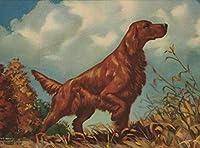 フレームレスデジタル絵画アイリッシュセッター犬DIY油絵描画キャンバスブラシ装飾ギフト