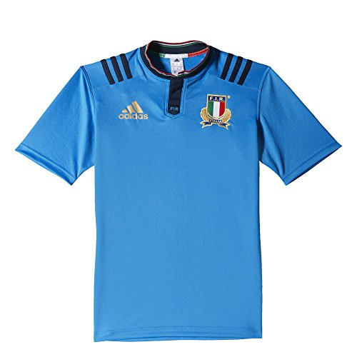 adidas Herren T-Shirt FIR H Jersey, Blau/Gold, S