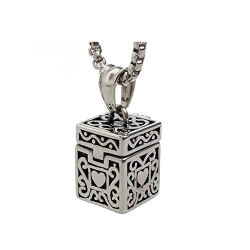CHALENHY Pet Urnen Einäscherung Schmuck, Einäscherung Urn Schmuck, Halsketten-Anhänger for die Einäscherung Asche, Einäscherung Urn Halskette for Asche, eleganter Memorial Schmuck, mit Edelstahlkette