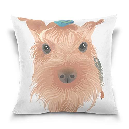 KAIHONG Taie d'oreiller carrée colorée en Velours de Coton Doux pour lit, Multi3, 41 x 41 cm