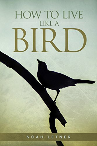 Book: HOW TO LIVE LIKE A BIRD - Another Chapter In The Bird Lessons Series by Noah Letner
